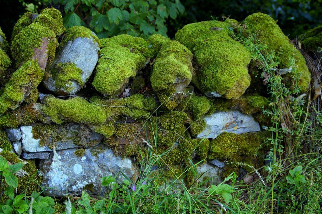 Parement en pierres naturelles