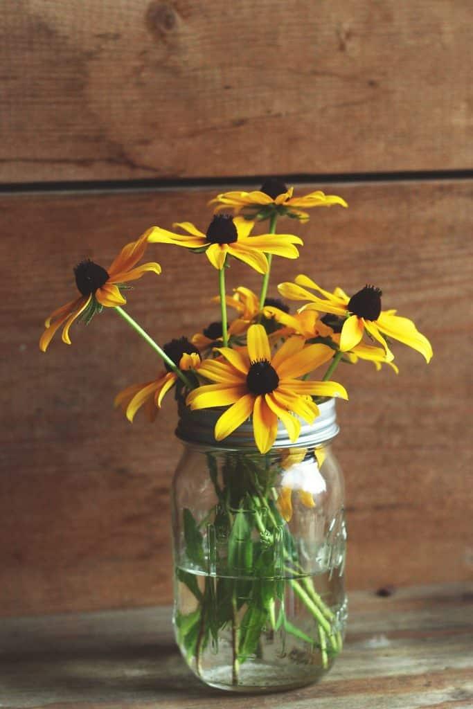 pot de fleurs original boîte de conserve