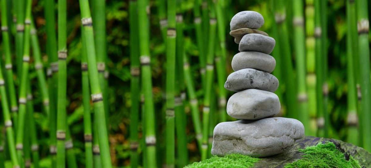 comment réaliser décoration de jardin japonais extérieur