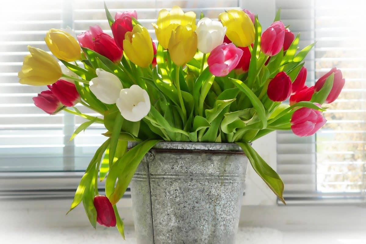 7 idées de pot de fleurs original