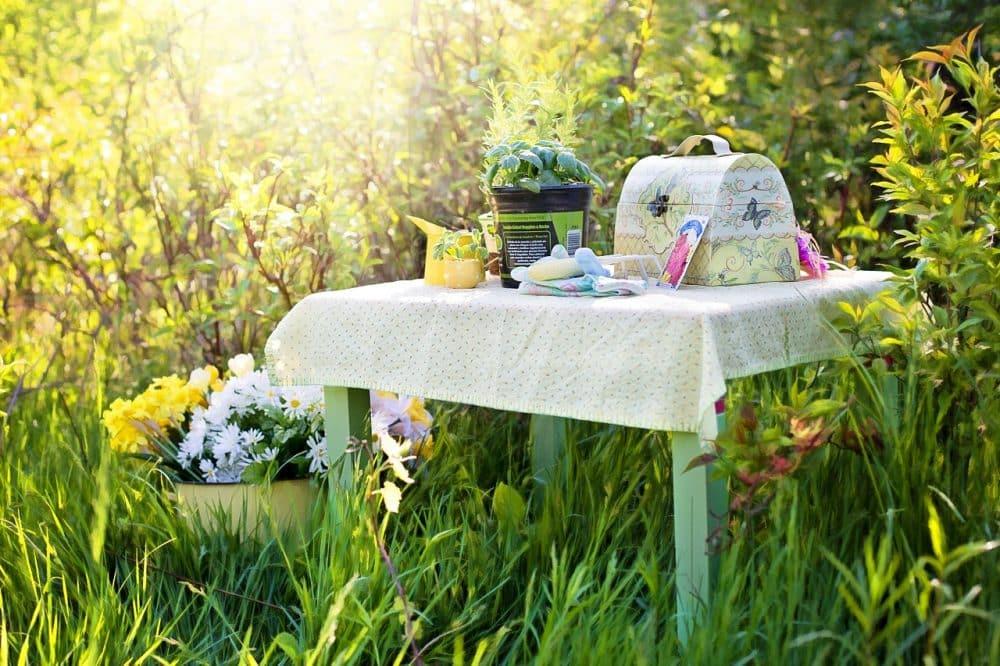 faire un pique-nique dans son jardin