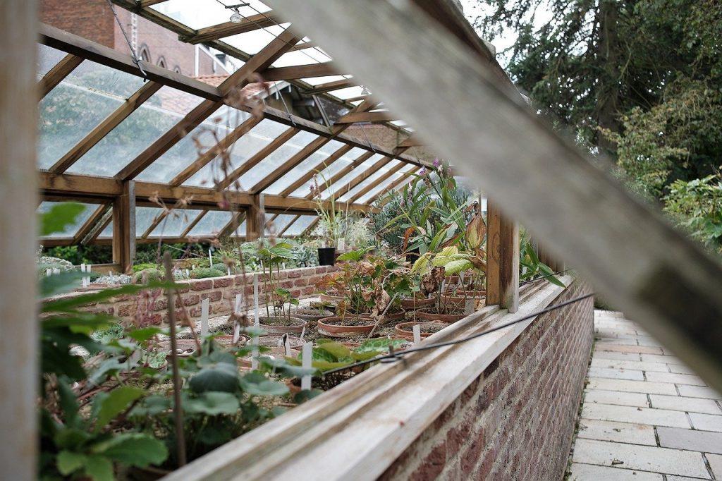 transformer sa serre de jardin et pièce de vie type à choisir