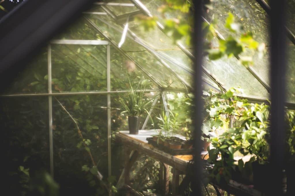 transformer sa serre de jardin et pièce de vie les avantages d'aménager