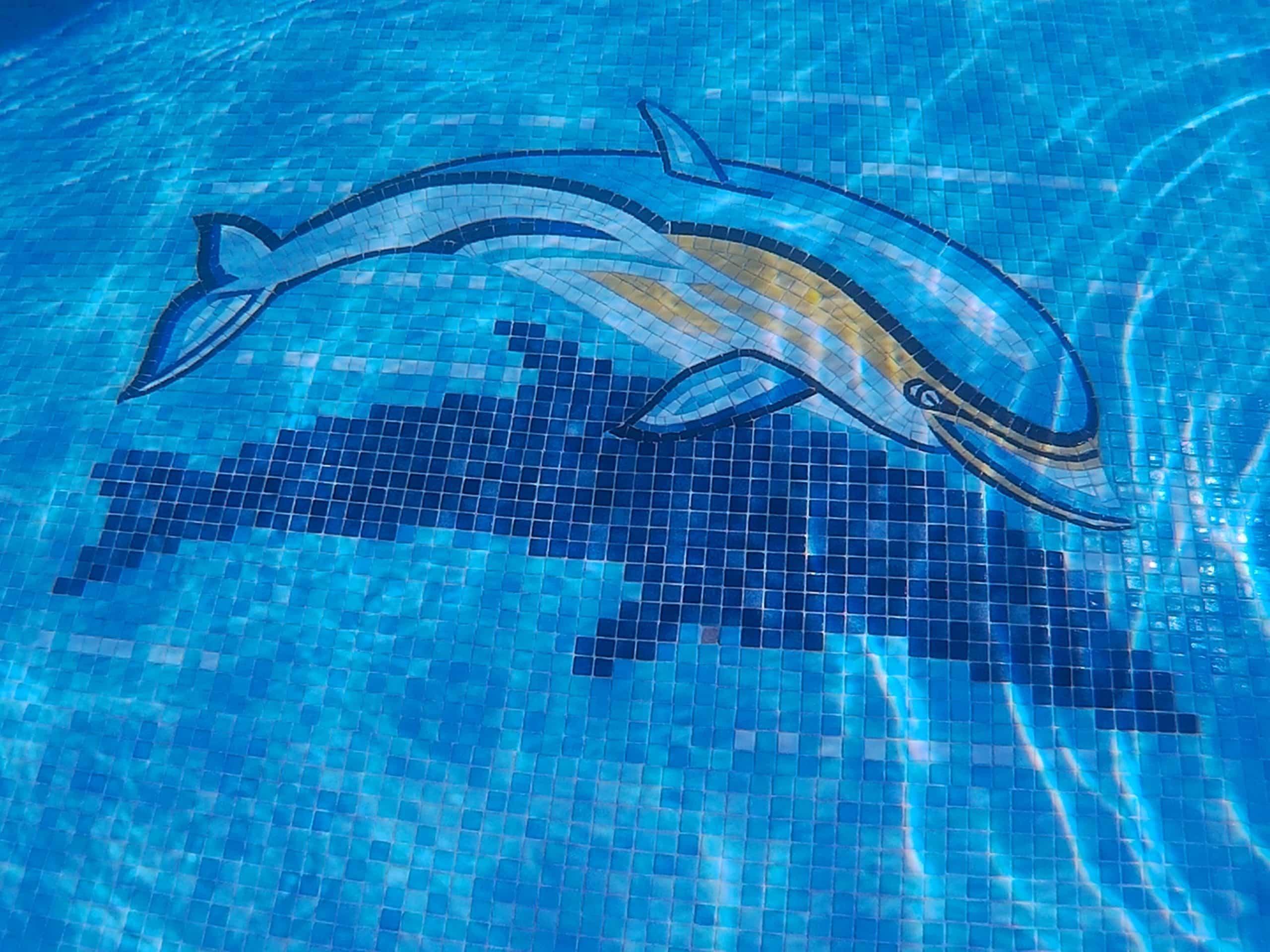 carrelage à motifs pour piscine revêtement décoratif tendance