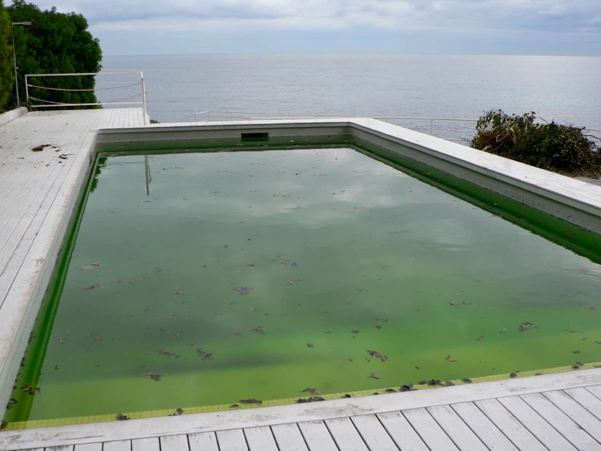 comment rattraper une piscine verte en moins de 48h