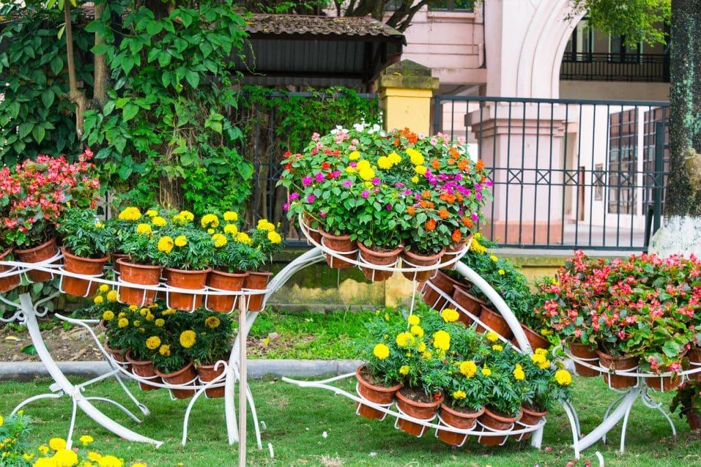 aménager son jardin en bricolant aire centrale
