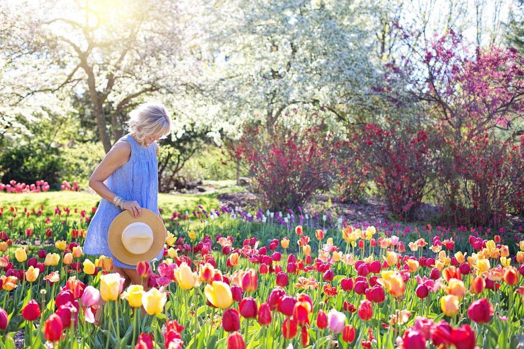 sublimer son jardin apporter un peu d'exotisme