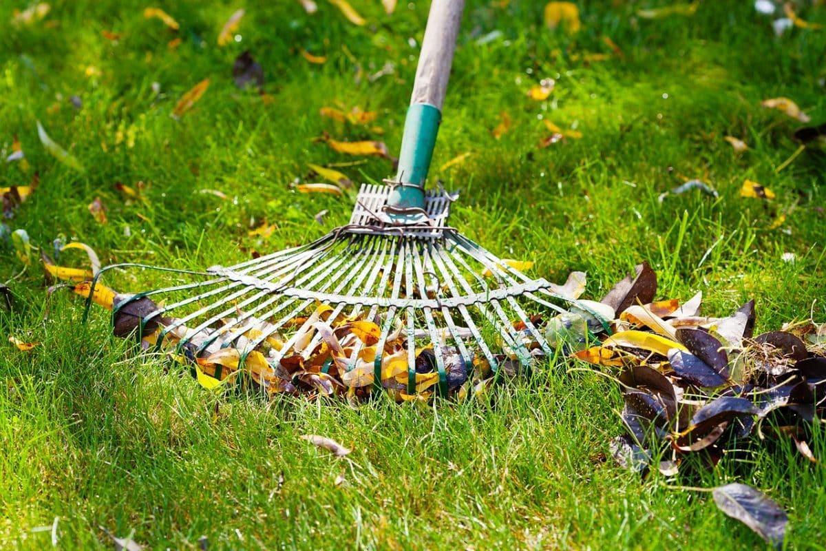 entretien de jardin les outils indispensables
