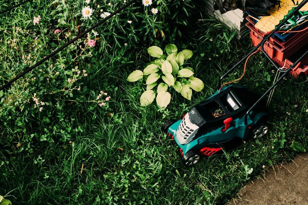 entretien de jardin ramasser les débris